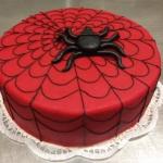 Torte Spinne T29.JPG