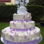 Hochzeitstorte Schmetterling H47